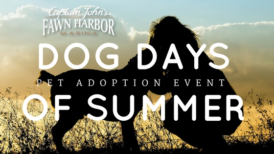 Dog Days of Summer - Big Bear Lake Adoption Event